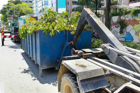 dumpster refuse removal Brockton MA